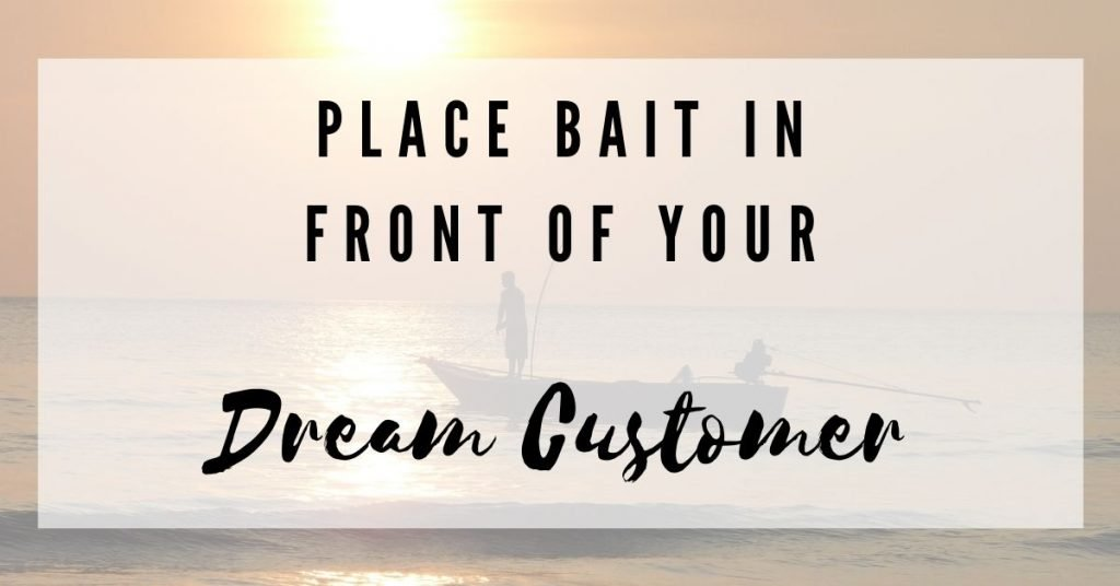 place bait in front of your dream customers