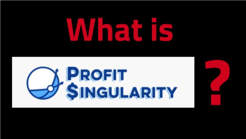 Profit Singularity Review